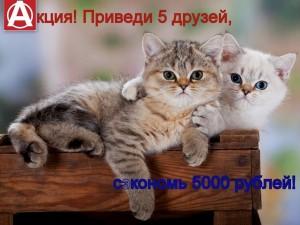 zdfYvxej_WE